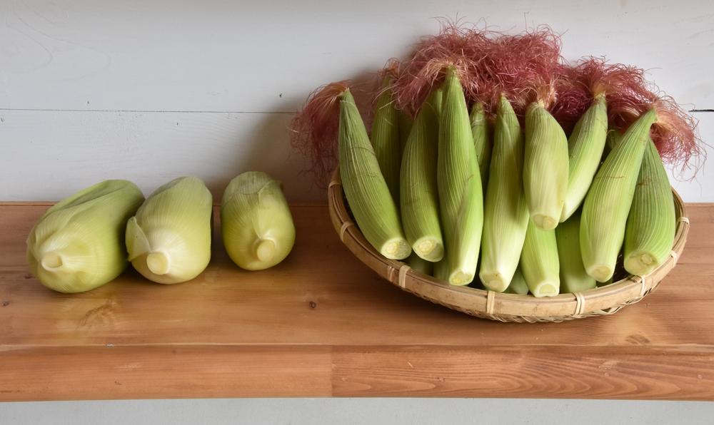 水果玉米及玉米筍農產品