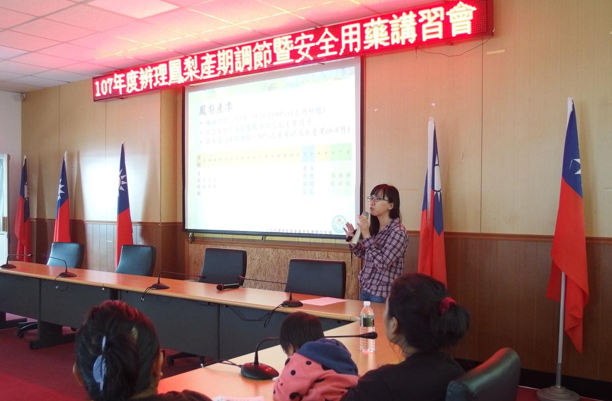 陳筱鈞助理研究員說明鳳梨產期調技術(延平場)