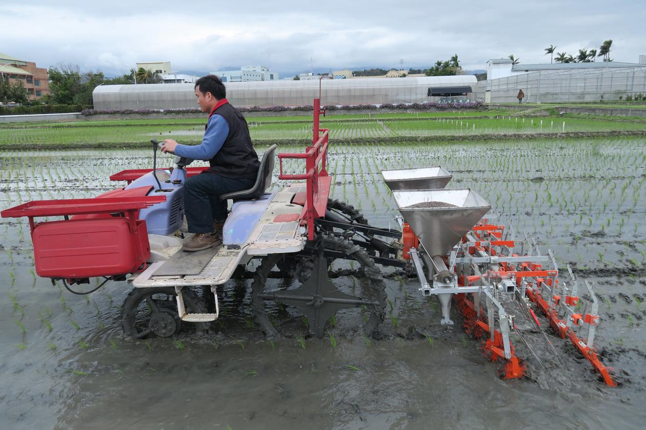 研發之新型附掛式式水田除草兼施肥機械